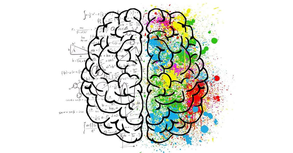 brain logical and creative parts