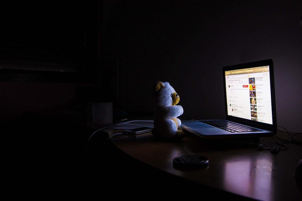 bear on laptop